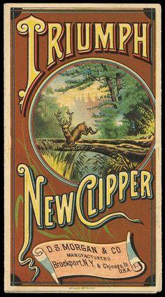 D. S. Morgan / Triumph New Clipper: