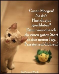 a picture for & # s heart & # Good morning.jpg & # – One of 0 files in the category & # good morning pictures & # on FUNPOT. Good Morning Funny, Good Morning Picture, Morning Pictures, Morning Humor, Good Morning Wishes, Good Morning Quotes, Peanuts The Movie, German Quotes, Animals And Pets