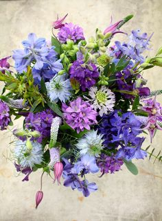 Striking blue bouquet. Love these colours.