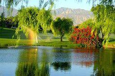 Romantic Vacation or Honeymoon in California