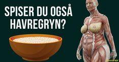 Forskerne forklarer hvad der sker i kroppen hvis du spiser havregryn hver dag.