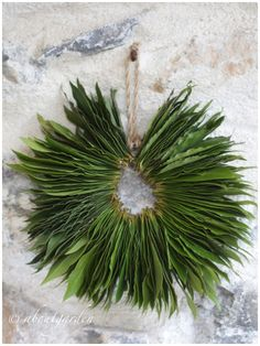 Laurel wreath...wish I had seen this before I dried my bay leaves..would have strung them like this!