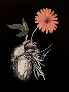 Love always grows back-  Roots surreal anatomy heart collage art by by Bedelgeuse