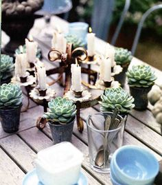 Beautiful Idea for a summer wedding in the country.  Inexpensive succulent cups to make and a cute takeaway gift.