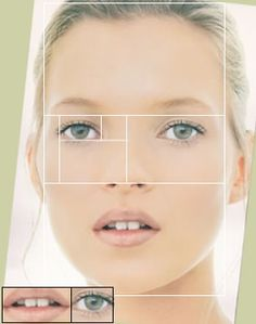 Faces, both human and nonhuman, abound with examples of the Golden Ratio. The mouth and nose are each positioned at golden sections of the distance between the eyes and the bottom of the chin. Similar proportions can been seen from the side, and even the eye and ear itself (which follows along a spiral).