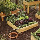 DIY: Small Space Vegetable Garden- would be great for herbs