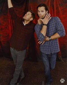 Supernatural photo ops: Jensen Ackles & Jared Padalecki. What a pair ;) -Brittany