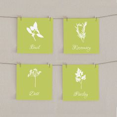 Herbs Kitchen Art Print Set - Parsley, Basil, Dill, Rosemary 5x5 (4). $28.00, via Etsy.