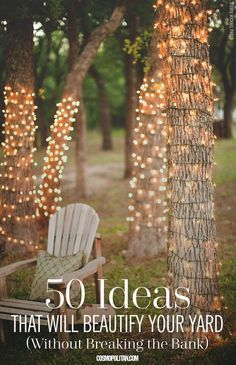 50 Ideas that will beautify your yard