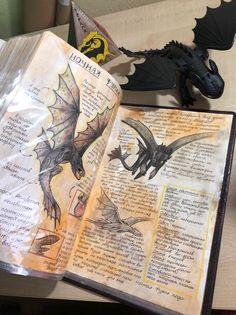 How To Train Dragon, How To Train Your, Libro Gravity Falls, Httyd Dragons, Toothless Dragon, Dragon Heart, Pinturas Disney, Dragon Rider, Night Fury
