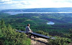 Go on a hiking trip (picture from Mistberget, veiw to the west. Trips, To Go, Hiking, Mountains, Nature, Pictures, Travel, Traveling, Walks