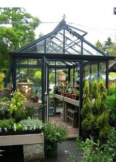 We enlist five outstanding best greenhouse ideas for beginners. These greenhouse ideas will enable you to devise strategies to shape the best possible model.