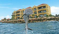 The Royal Haciendas - Riviera Maya resort | Royal Resorts | Royal Resorts®. Looking forward to September vacations with Royal Resorts!