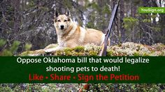 UNFRIGGIN BELIEVABLE! Help STOP this UNEVOLVED OKLAHOMA REDNECK bill that would legalize shooting family pets to death!   http://www.yousign.org/en/oklahoma-law