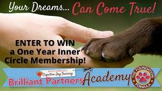 WIN a $1,235.00 Brilliant Partners Academy Partnership Package