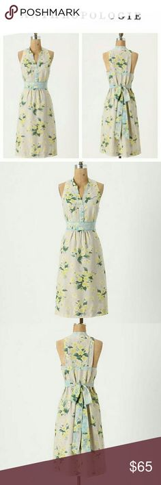 """Anthropologie Maeve Dutch Yellow Floral Dress NWOT does still have brand tag attached though. Accented by spring-sky-blue piping, crocus seedlings sprout about Maeve's cotton-silk dress. Side zip Cotton, silk; polyester lining Imported Style No. 20613071 Approx measurements... Across underarms 16"""" Length: 37"""" Waist: 15"""" across Hips"""" 19"""" across. Never worn, smoke free home. Anthropologie Dresses Midi"""