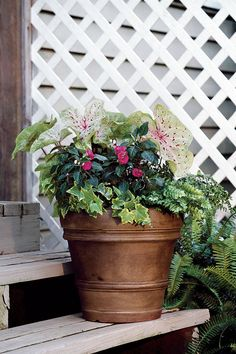 Update your standard plastic planter. A gel stain was applied to this pot for a richer finish.