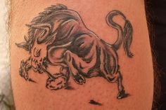Bull Tattoo Designs | Pit Bull Angry Tattoo On Chest