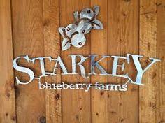 U-Pick Season Opening March Blueberry Farm, April 5th, Field Trips, Seasons, Tampa Bay, Blueberries, Farms, Fun, Places