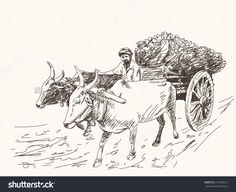 Asian Farmer Riding On Ox Cart Stock Vector 218764627 - Shutterstock