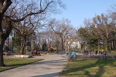 Wikimedia Commons, Vienna, 18th, Sidewalk, Park, Image, Psychics, Walkway, Parks