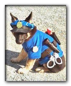 dog costumes edmonton