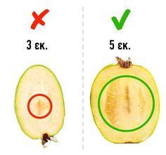 9 φρούτα που δε θα διαλέξετε ποτέ ξανά λάθος  #Συμβουλές #Φρούτα