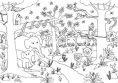 Jungle Coloring Pictures Print Free Pages