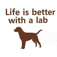 Chocolate Labrador Retriever Decal Lab Lover Life is better with a lab: