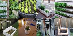 Some cool garden ideas plus beer!