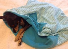 Turqoise Dog Snuggle Sack- Love this for all of our family dogs.