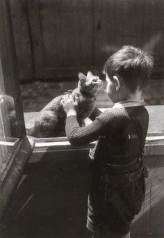 """Willy Ronis - """"Le chat de la concierge"""" Paris,1947."""