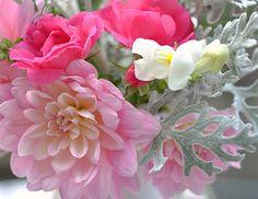 Shirley's flowers