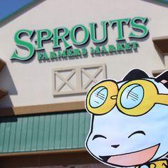 PandaOki at Sprouts! @Sprouts #adventures #ComicGate #kids #family #childrensbooks #art #books #anime #fun #exercise #read #bookclub #MustRead #reading #authors #pandas #pandaoki #comics #outside #unplug #organic