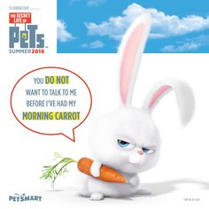 Replace carrot with coffee, and you're just like the rest of us, Snowball. #thesecretlifeofpets