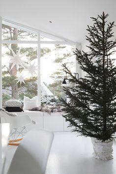 The Norwegian home of Elisabeth Heier at Christmas