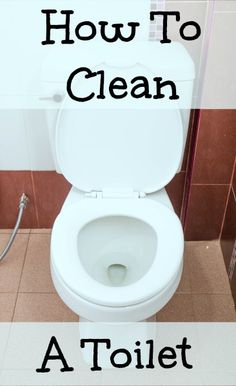 How to Clean That Stubborn Toilet Bowl Ring for .25 Cents | Toilet ...