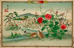 Quails and Peonies by Rinsai Utsushi