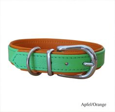 Halsband Basic, apfelgrün-orange