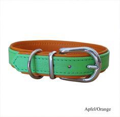 Halsband Basic, apfelgrün-orange