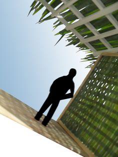 Arquitectura con palma -muros tejidos-