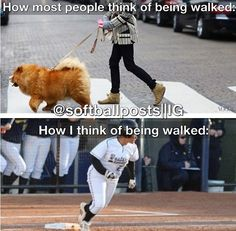 Softball - How I think of being walked that is true! Funny Softball Quotes, Softball Rules, Baseball Memes, Softball Problems, Softball Pitching, Softball Pictures, Girls Softball, Softball Players, Fastpitch Softball