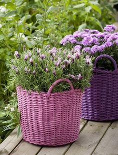 Beautiful baskets