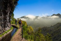 Levadas of #Madeira the Best Summer Trip 2017, If You're Feeling Adventurous, according to National Geographic Travel 15-05-2017   Madeira not only possesses towering mountains and turquoise waters, but an extensive 1,926 miles of ancient water channels, or levadas... Go now, before the rest of the world figures out how beautiful they are. + info: https://www.visitportugal.com/en/destinos/madeira   www.visitmadeira.pt