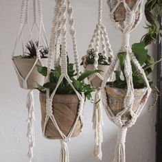"""Perfect for hanging potted plants, each cotton macramé hanger is handmade, offering its own unique qualities. For a different look hang glass vases or even baskets. A simple way to add green to any interior. Recommended for mid to small size planters. Pot not included. Measures53.15"""" in length."""