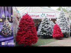 Árboles maquillados, todo lo que debes de saber – La Navidad Colorful Makeup, The Creator, Christmas Tree, Holiday Decor, Ideas, Amor, Latest Trends, The Originals, Xmas