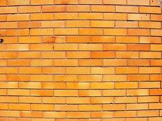 Orange glazed brick Bakery Shop Interior, Glazed Brick, Crow's Nest, Tree Canopy, Project Board, Shop Interiors, Terraces, Kiosk, Crows