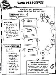 Odor Detectives worksheet