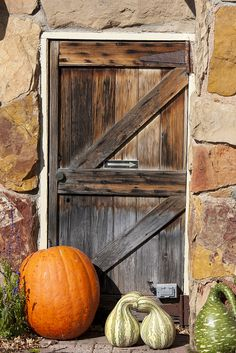 Old Stone Barn...with weathered wood door...fall pumpkins & gourds.