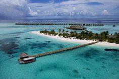 The Luxury Diva Holiday Resort, Maldives 13